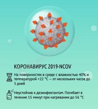 время жизни коронавируса