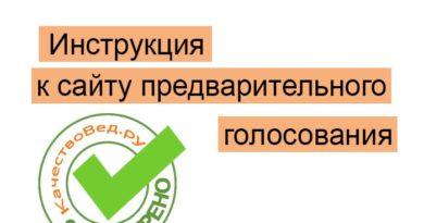 pg er ru предварительное голосование 2020 зарегистрироваться
