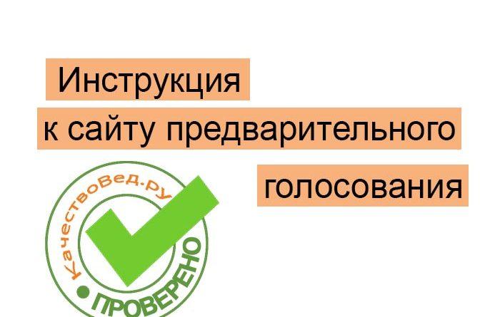 pg.er.ru предварительное онлайн голосование 2021 зарегистрироваться