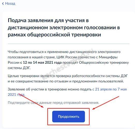 инструкция подачи заявления на онлайн голосование